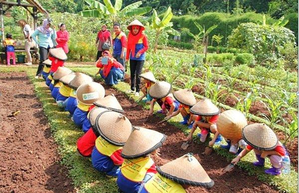 Edukasi sebagai Petani