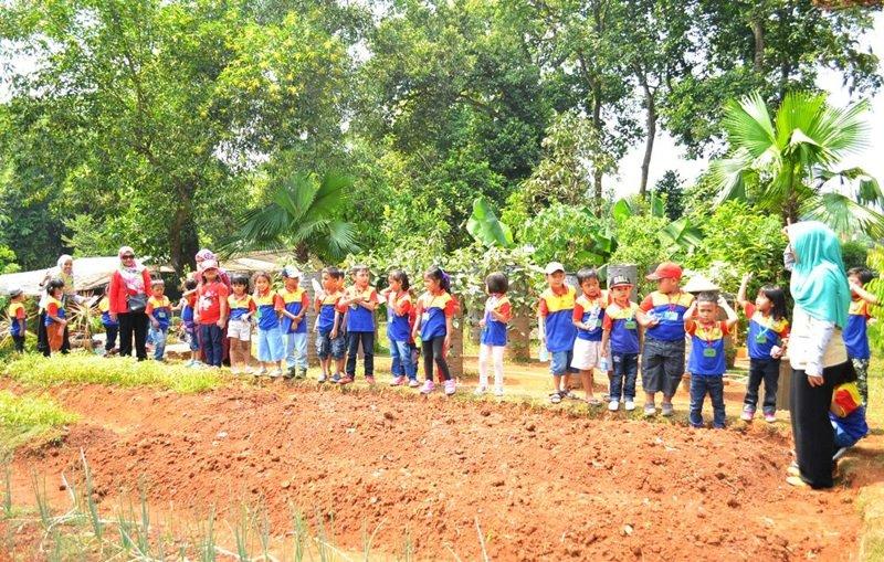 Belajar menanam padi