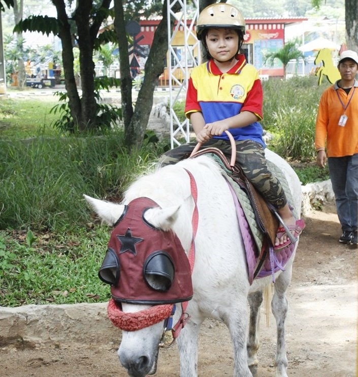 Menunggangi kuda poni